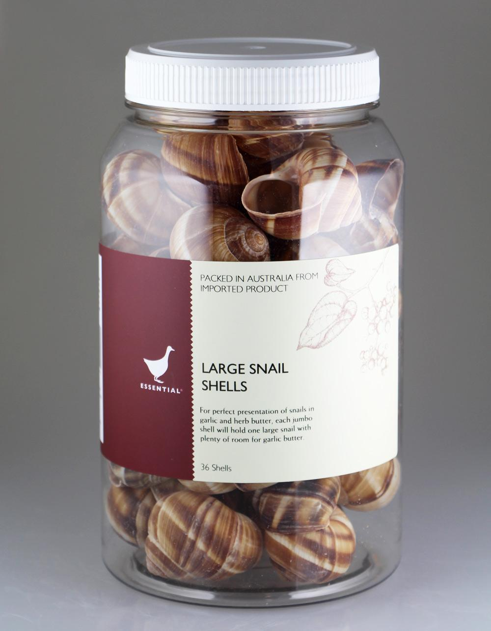 The Essential Ingredient Large Snail Shells 36 pieces