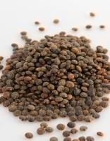 The Essential Ingredient Australian Fine Green Lentils 2kg
