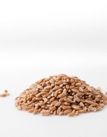 The Essential Ingredient Australian Organic Spelt 2kg